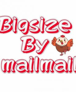 big size by mail mail logo